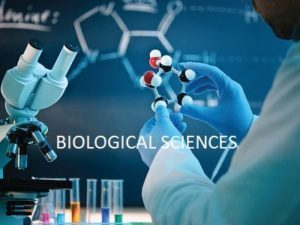 BIOLOGICAL SCIENCES Accurate JAMB & O'level Subject Combination